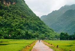 Vietnam'ın başkenti Hanoi'de gezilecek yerler
