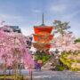 Japonya'ya Seyahat; Yükselen Güneş Ülkesi